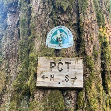 Pacific Crest Trail S01E87