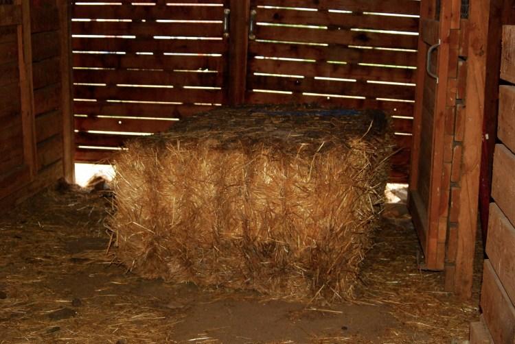 Straw bale in the barn isle