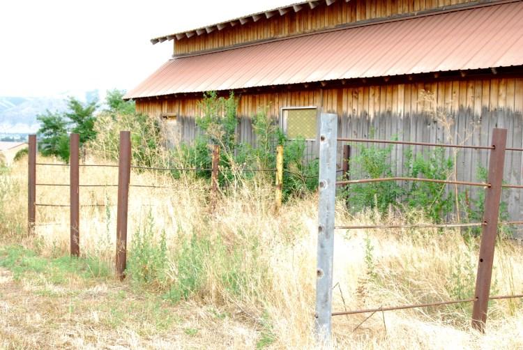 North side of barn