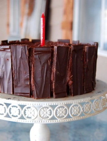 Side view of a chocolate cake decorated like bark.