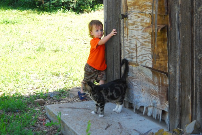 Abram and Turtle the Cat