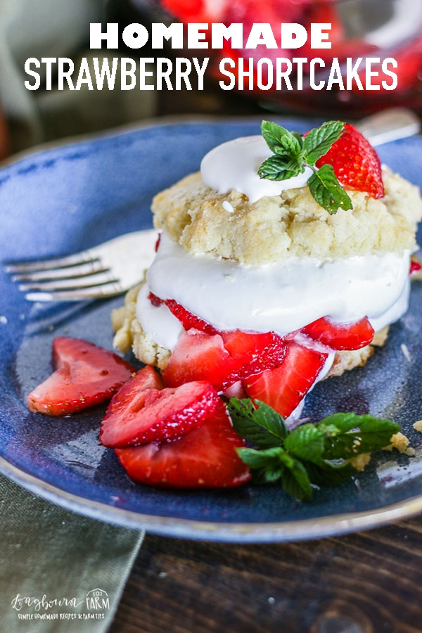 This homemade easy strawberry shortcake recipe is incredible! Soft and sweet cake piled with strawberries and whipped cream. You'll always get asked for this recipe! #longbournfarm #strawberryshortcakerecipe #strawberryshortcakes #strawberryshortcake #homemadeshortcake #homemadestrawberryshortcake