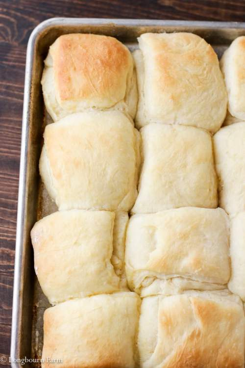 Easy Dinner Roll Recipe!
