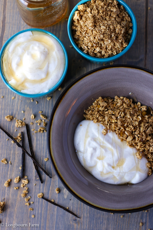Quick Breakfast Idea: flavored yogurt + granola!