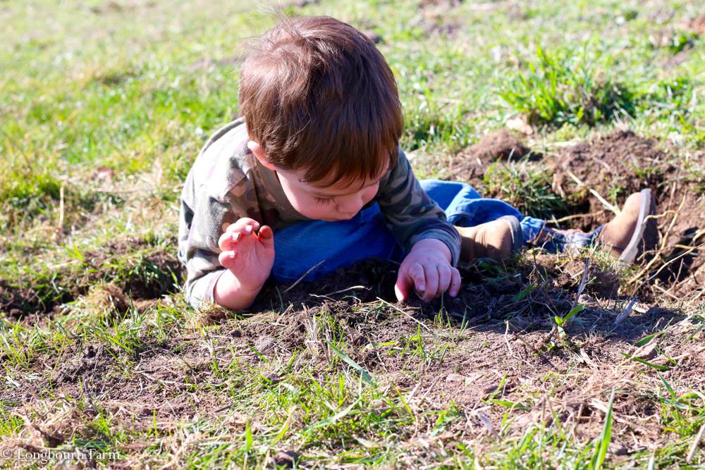 How to prepare your garden soil!