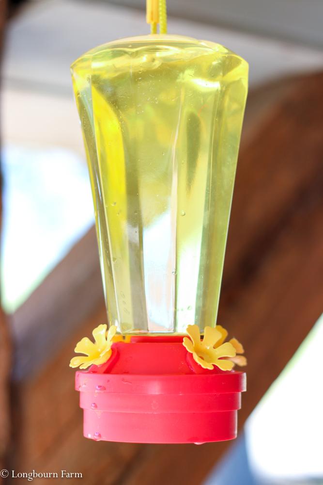 How to make hummingbird food!