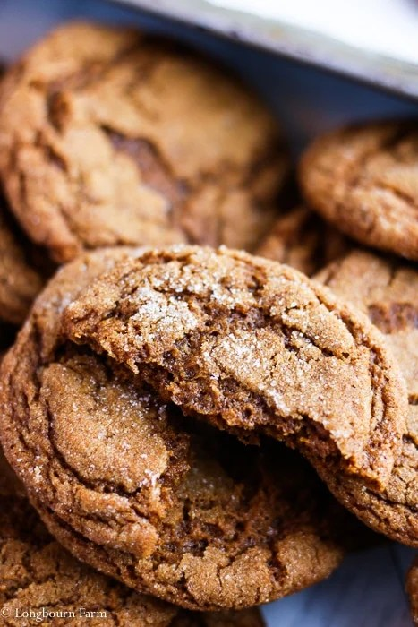 Close-up of a molasses ginger cookie that has been broken in half.