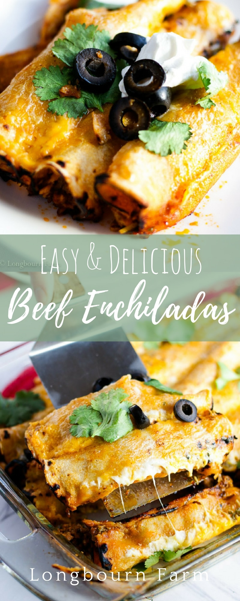 Easy beef enchilada recipe! This recipe is so good with a completely homemade enchilada sauce that doesn't take a blender to make. SO EASY! Plus 3 ideas for making beef enchilada freezer meals!