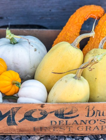 Winter squash in a wooden box.
