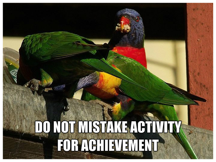 DO NOT MISTAKE ACTIVITY FOR ACHIEVEMENT