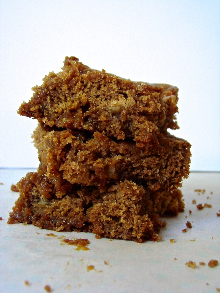 Caramel Apple Spice Blondies | longdistancebaking.com