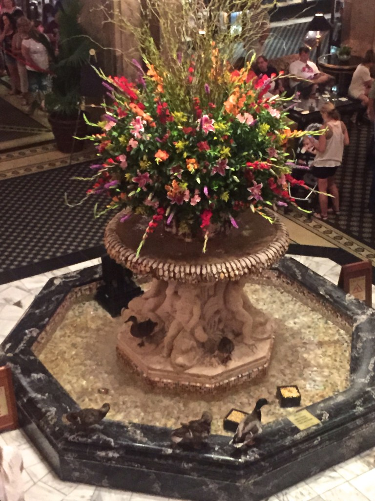 What to do in Memphis - Peabody Ducks | longdistancebaking.com