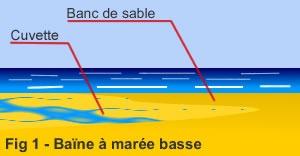 Baine
