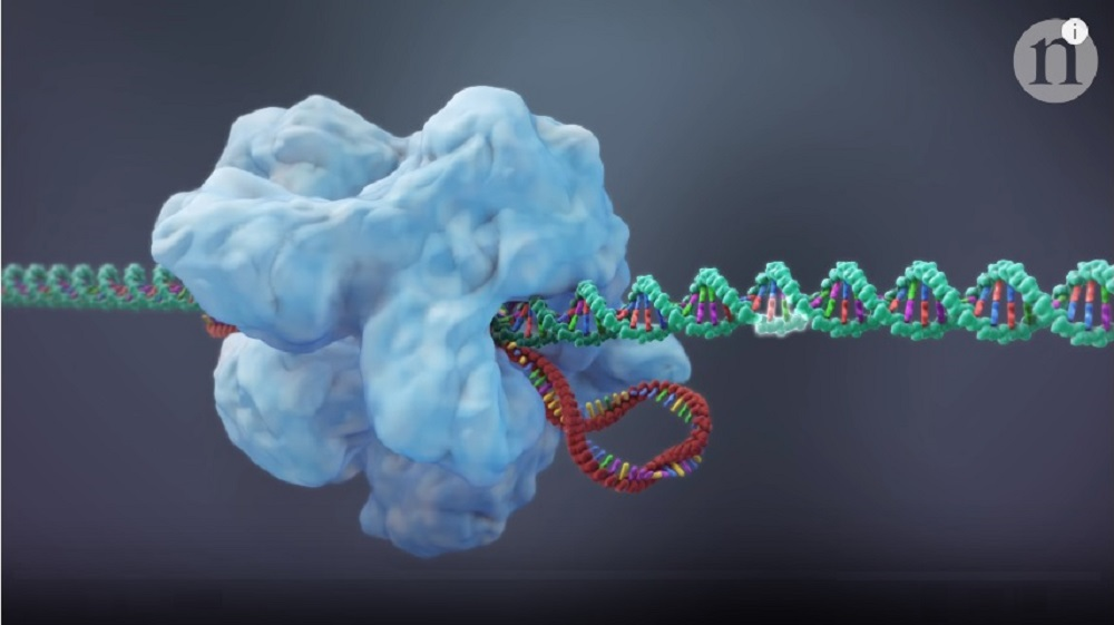 CRISPR 2.0: New Ways to Edit Genes in Our Body (video)