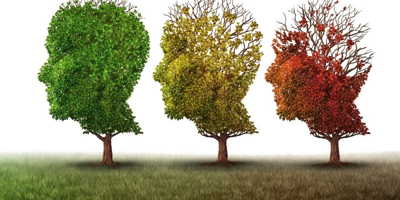Can geroprotectors prevent Alzheimer's?