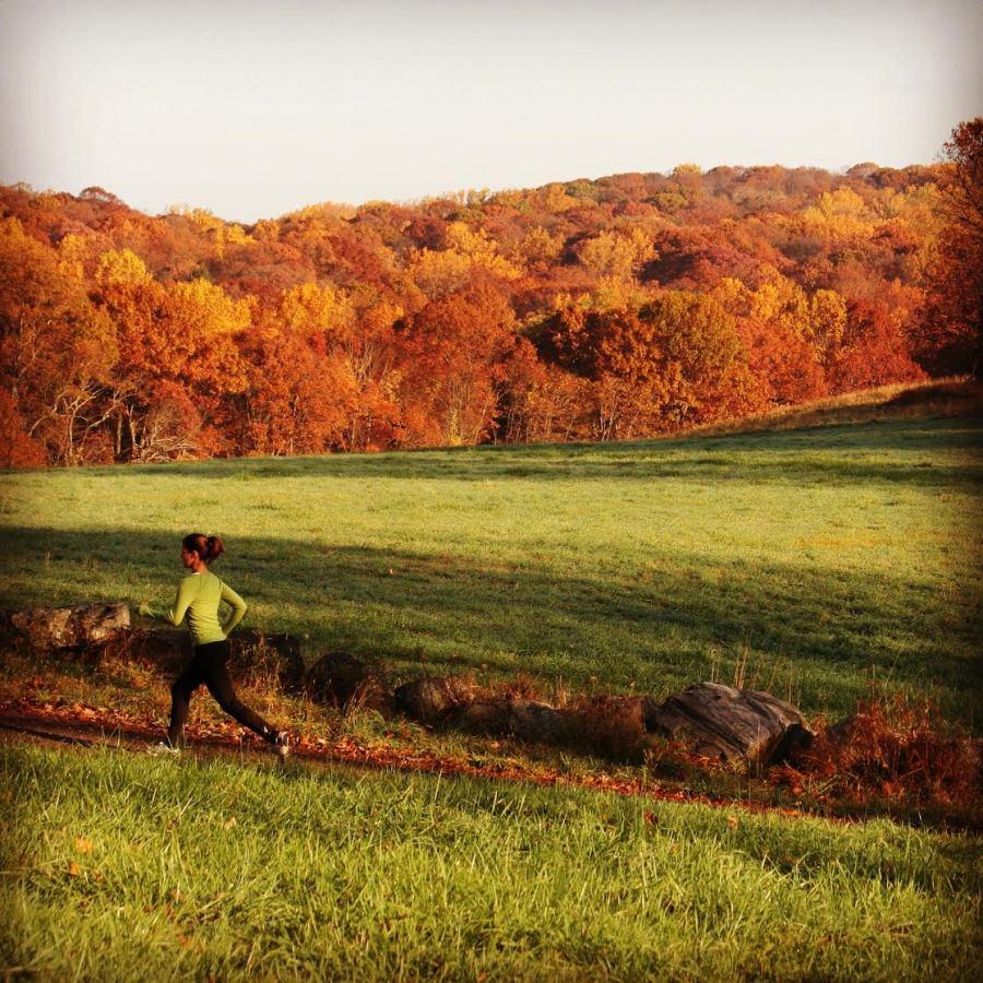 Trail running in New York