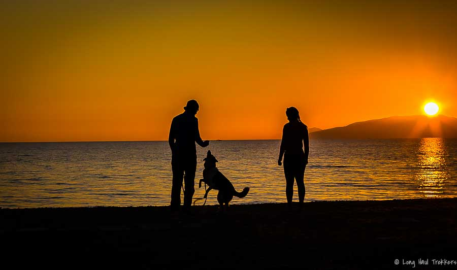 Family_Silhouette-1