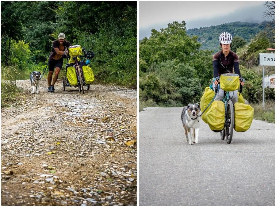 Leash_Biking