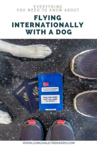 Flying internationally with a dog is complicated and requires a lot of time and paperwork. This post details everything you need to know for a successful flight.