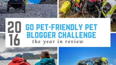 Go Pet Friendly Pet Blogger Challenge: 2016 in Review | Long Haul Trekkers