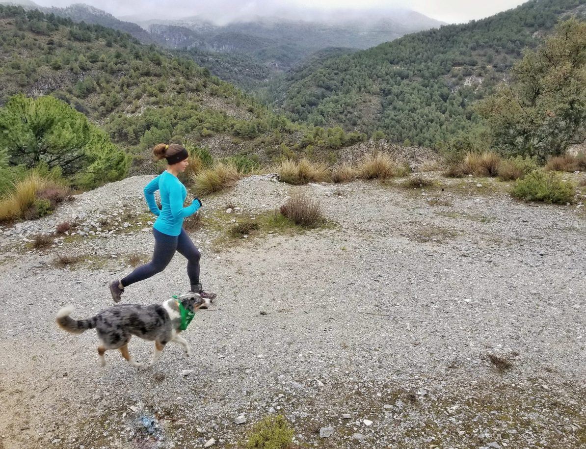 Running with your dog in cold temperatures.