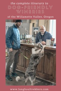Wine tasting is one of the most dog-friendly activities around! This itinerary showcases some of the Willamette Valley's most dog-friendly wineries and includes accommodation and restaurants.