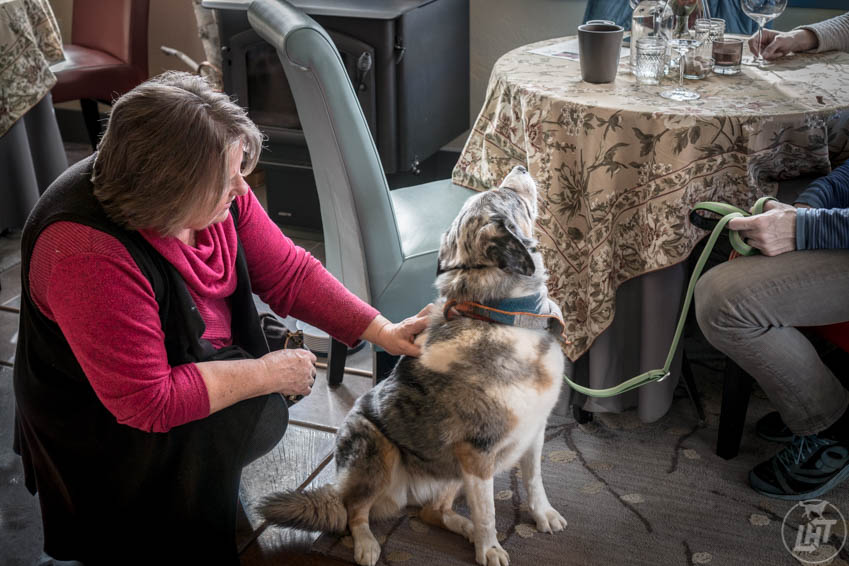 Sora receives love from Gabriele, owner of Keeler Estate