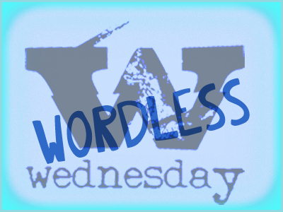 Wordless Wednesday and a Blog Hop! 3-21-2012
