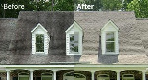 Best Roof Cleaning Service Near Me in Lattingtown NY