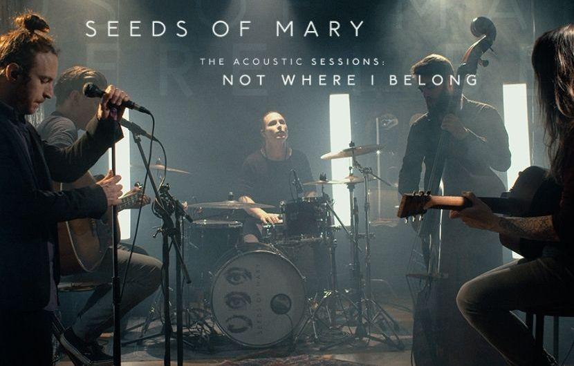 Découvrez Seeds of Mary en session live acoustique
