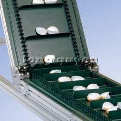 long quyen incline conveyor (11)