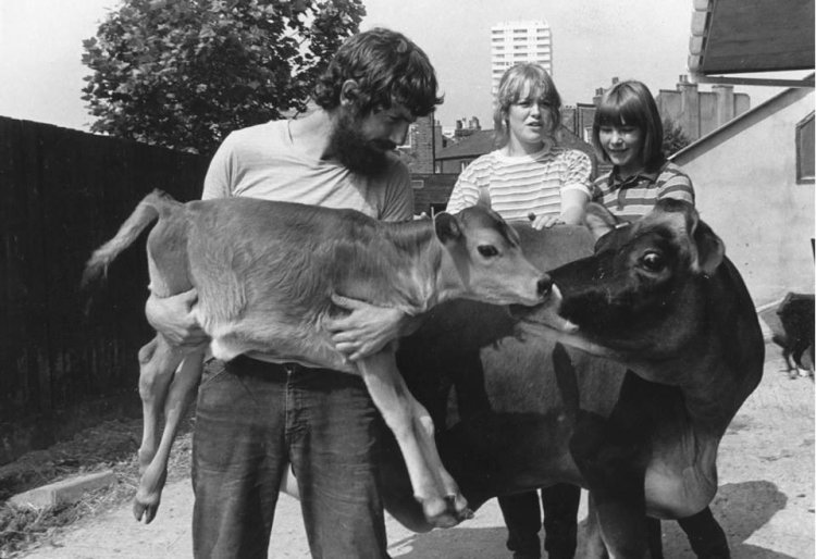 Kentish Town City Farm in the 1970s.Image courtesy of Kentish Town City Farm