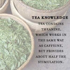 teacaffeine