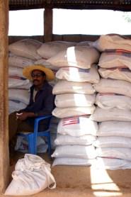 Guarding the Grain
