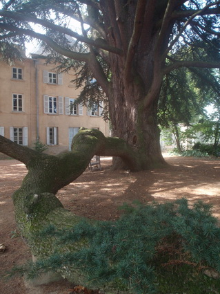 Le jardin  Chteau de Longsard au nord de Lyon