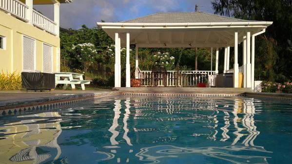 The beautiful pool at the neighbour's house. We looked after it, along with their 4 dogs, while they spent a weekend away