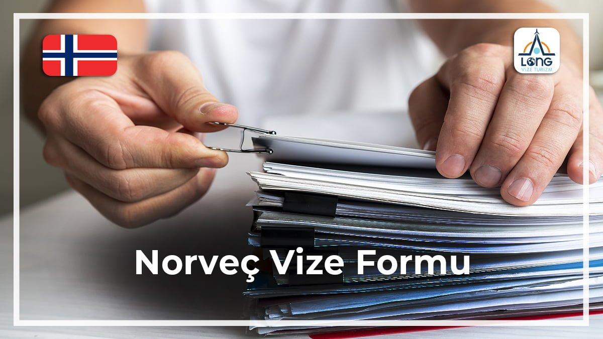 Vize Formu Norveç