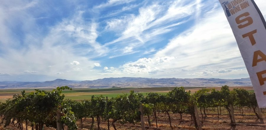 Sights from Sawtooth Winery