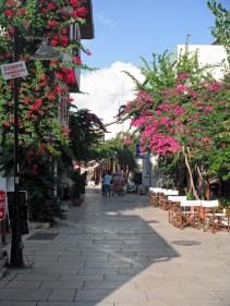 Flower Street Two