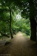 Path 20130823-16