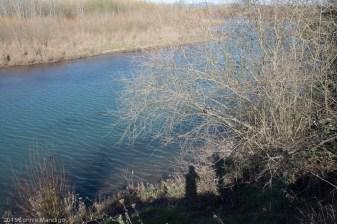 2015.02-Snag Boat Bend-11-0684