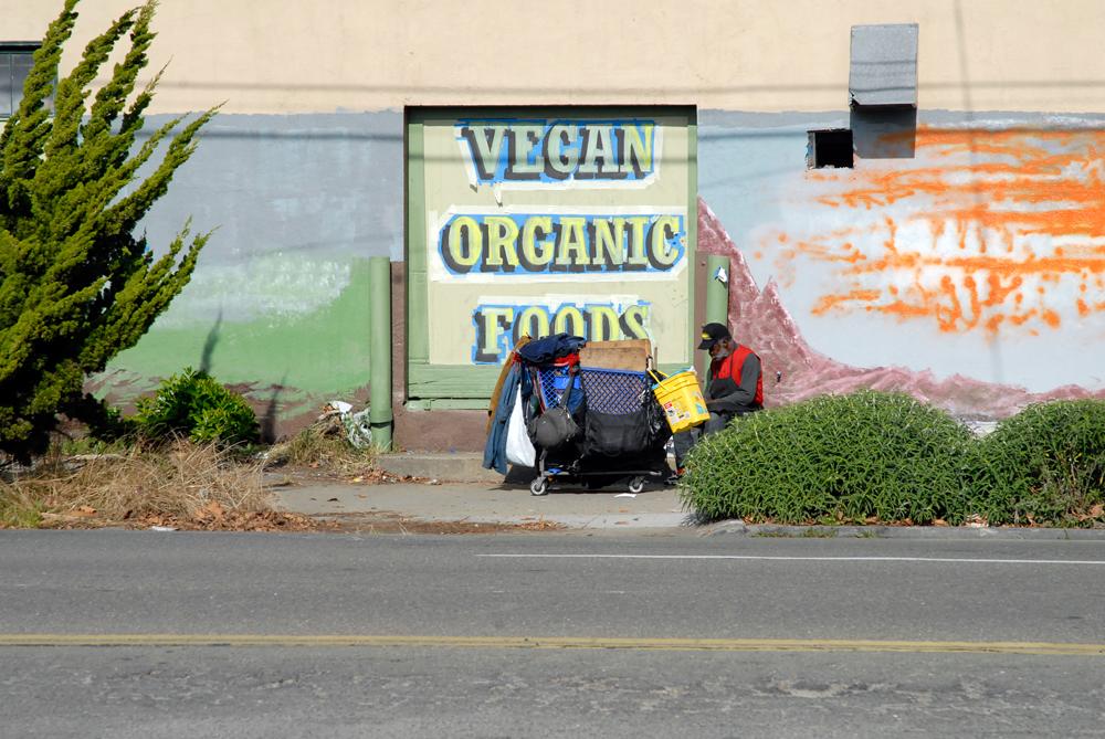 Vegan Organic Foods