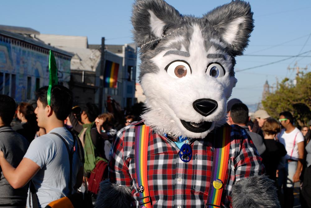 Dyke March Wolfdog