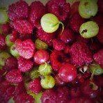 lookafteryourplanetblog fresh garden berries