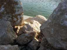 mopana-white-beautiful-rocks-18