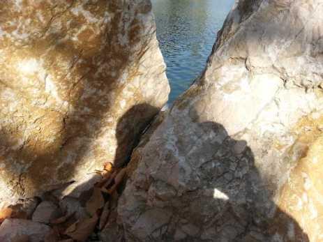 mopana-white-beautiful-rocks-07