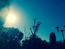 mopana-airplane-on-the-sky-03