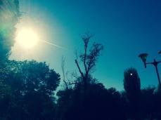 mopana-airplane-on-the-sky-06