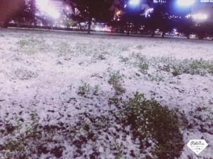 mopana-First-snow-01