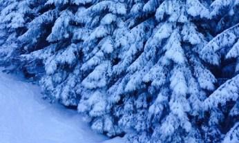 blue-snow-06